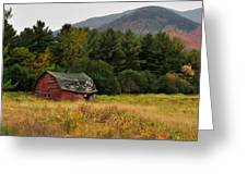 Old Red Barn In The Adirondacks Greeting Card by Nancy De Flon