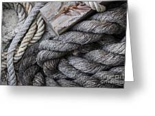Old Ropes On Dock Greeting Card
