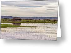 Old Shed On Marsh Greeting Card