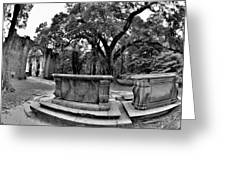 Old Sheldon Church Ruins Beaufort Sc Black And White Greeting Card