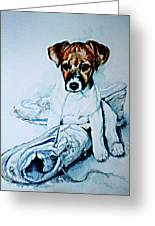 Old Shoe Pup Greeting Card