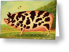 Old Spot Pig Greeting Card