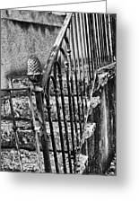 Old Steps And Railings Greeting Card