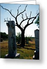 Old Stones In Old Cementery Greeting Card
