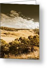 Old Summer Hills Greeting Card