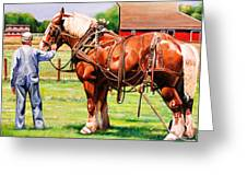 Old Timers Greeting Card by Toni Grote