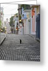 Old Town Alley Cat Greeting Card