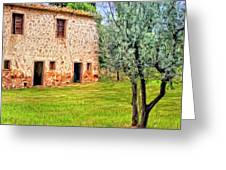 Old Villa And Olive Trees Greeting Card