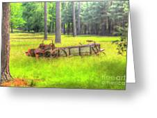 Old Wagon In Field Greeting Card