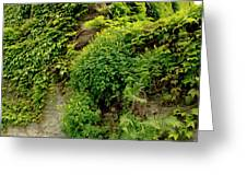 Old Walls Rising From The Water Edge. Greeting Card