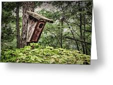 Old Weathered Worn Bird House In Summer Greeting Card