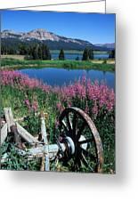 Old Wheel And Brooks Lake Greeting Card by Kathy Yates
