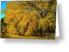 Old Yellar Greeting Card