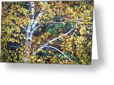 Old Yellow Birch Greeting Card