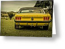 Old Yellow Mustang Rear View In Field Greeting Card