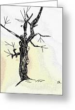 Oldest Tree Greeting Card