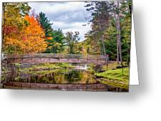 Ole Bull State Park - Pennsylvania Greeting Card