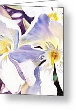 Oleander By Irina Sztukowski Greeting Card