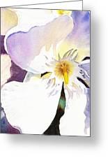 Oleander Flower By Irina Sztukowski Greeting Card