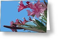 Oleander Flowers Wilting In The Brutal Florida Sun    Greeting Card