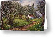 Olive Grove In Spring-time Greeting Card