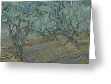 Olive Grove Saint Remy De Provence  June 1889 Vincent Van Gogh 1853  1890 Greeting Card