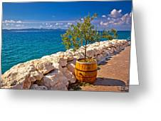 Olive Tree In Barrel By The Sea Greeting Card