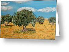 Olive Trees In Summer Greeting Card