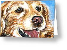 Oliver From Muttville Greeting Card