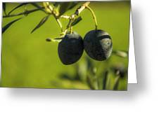 Olives #1 Greeting Card