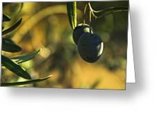 Olives #2 Greeting Card
