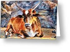 Om Beach Bull Greeting Card by Claudio  Fiori