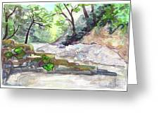 On A Mountain River Greeting Card