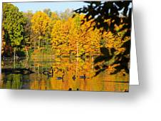 On Golden Pond 2 Greeting Card