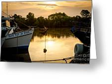 On Golden River Greeting Card