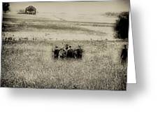 On The Battlefield - Gettysburg Greeting Card