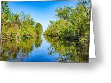 On The Bayou 3 Greeting Card