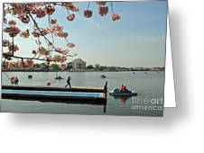 On The Cherry Blossom Dock Greeting Card