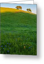 On The Hilltop Greeting Card