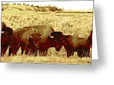 On The Move ... Montana Art Photo Greeting Card
