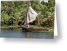 On The Nile Greeting Card