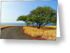On The Road To Lapakahi Greeting Card