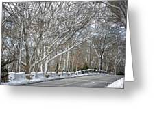 On The Road To Woods Hole Greeting Card