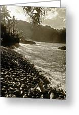 On The Rocks Bw Greeting Card