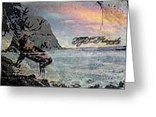 On The Rocks. Greeting Card