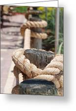 On The Ropes Greeting Card