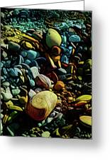 On The Shores Of My Imagination Greeting Card