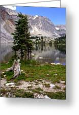 On The Snowy Mountain Loop Greeting Card