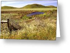 On The Way To Abbotts Lagoon Greeting Card