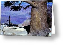 On The West Rim Of The Grand Canyon Greeting Card